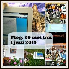 plog26mei2014