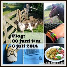 plog blog 6 juli