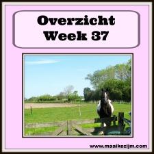 week37